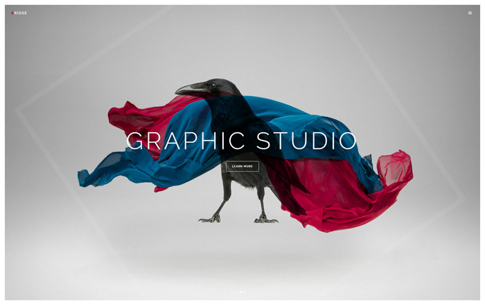 Bridge Graphic Studio Demo