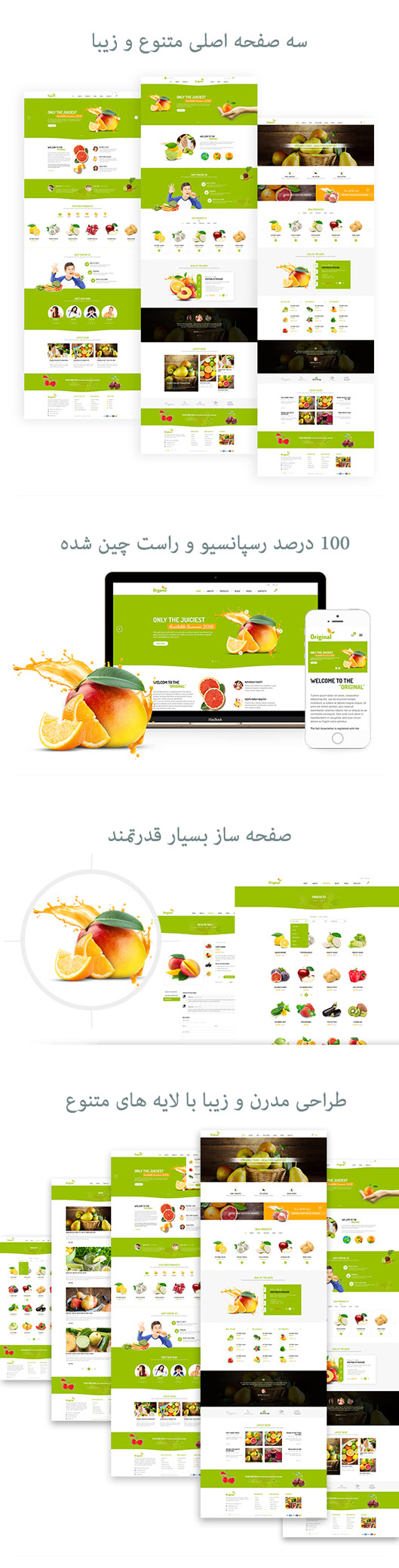 قالب Organic | قالب فروشگاهی ارگانیک پوسته وردپرس حرفه ای | قالب حرفه ای organic