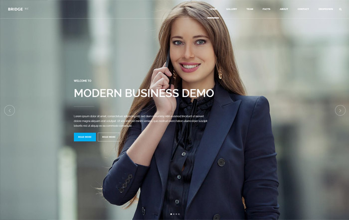 Bridge Modern Business Demo