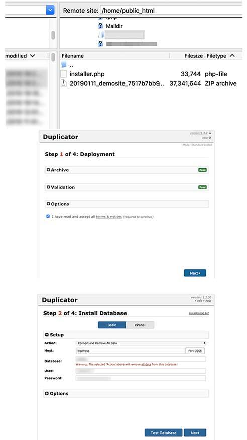 انتقال سایت وردپرس به دامنه جدید