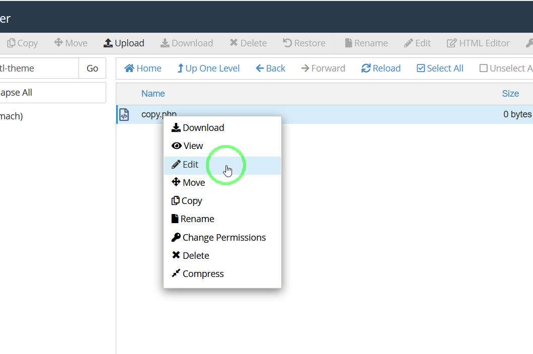 آموزش روش انتقال فایلهایی با حجم بالا از سرور یا هاست قدیمی به هاست