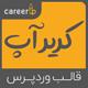 قالب Careerup | حرفه ای ترین قالب وردپرس کاریابی و مشاغل